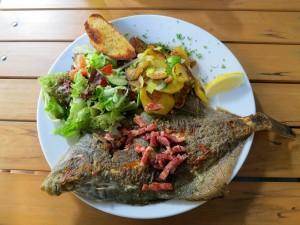 Foto van een bord met gebakken platvis, een beetje gebakken aardappelen en salade