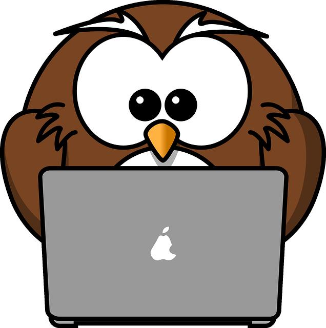 Uil studeert achter laptop