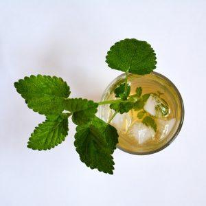 koel drinken met citroenmelisse